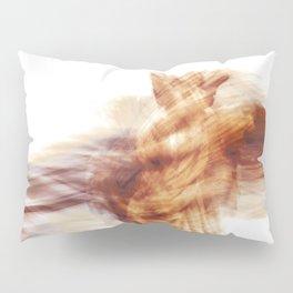 011-2020 Barcelona, Spain Pillow Sham