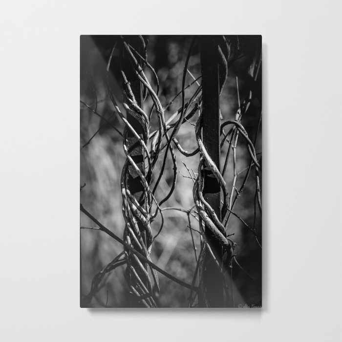 Twisted & Tangled Metal Print