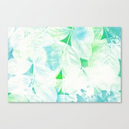 White Leaves Canvas Print