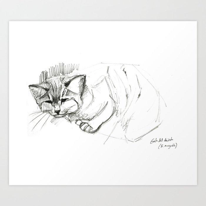 Felis margarita Desert cat Art Print