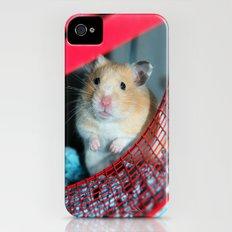 Pumpkin Slim Case iPhone (4, 4s)