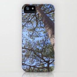 Forest 3 iPhone Case
