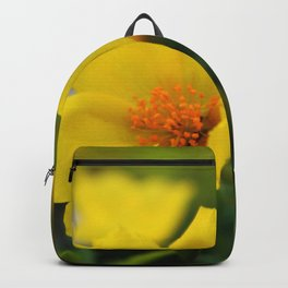 Yellow Buttercup Flower Backpack