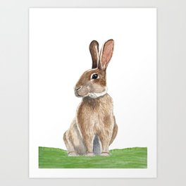 Rabbit in Grass Watercolor Art Print