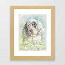 ENGLISH SETTER PUPPY Cute dog portrait on the dandelions meadow Framed Art Print