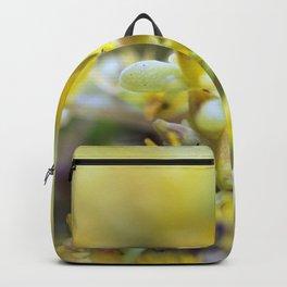 Yellow Sedum Backpack