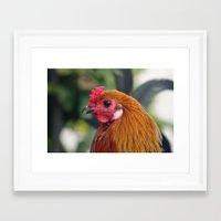 cock Framed Art Prints featuring Cock by Falko Follert Art-FF77
