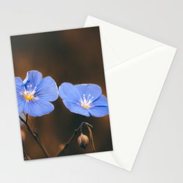 Flower Photography by Mack Fox (MusicFox) Stationery Cards
