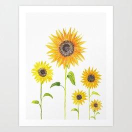 Sunflowers Watercolor Painting Art Print