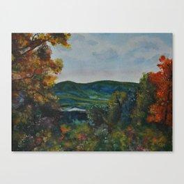 Silver Sliver Canvas Print