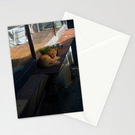 Naoshima Cat Stationery Cards