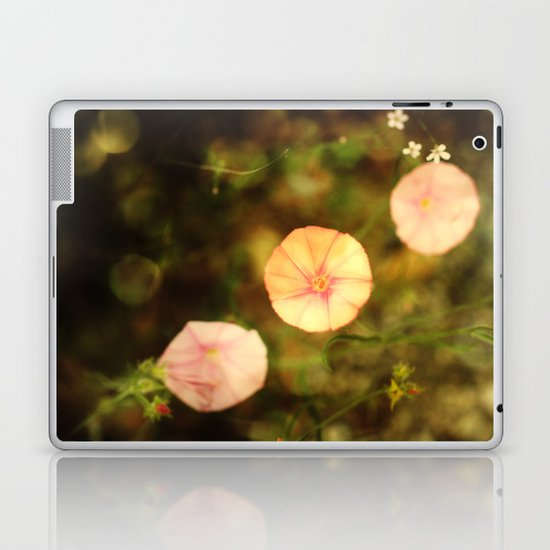 afternoon walk Laptop & iPad Skin