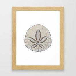 sandollar Framed Art Print
