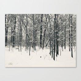 Snowy Trees in Virginia Canvas Print