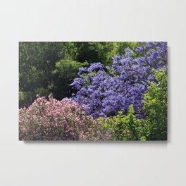 Blooming Spring Trees Metal Print