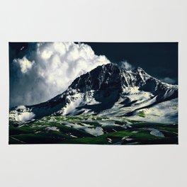 XIX Mountain Rug