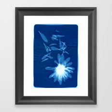 indigo 5 Framed Art Print