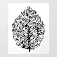Leaf (i) Art Print