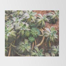 Botanical Gardens Succulent #882 Throw Blanket