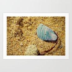 Sand and Shell Art Print