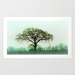 Misty Green Tree Art Print