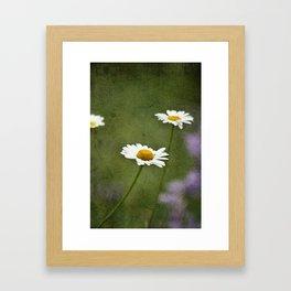 Daisy Chain 2 Framed Art Print