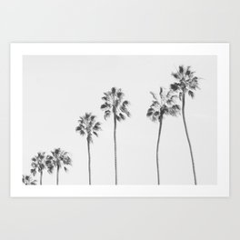 Palms in a Row Art Print
