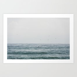 Lonely Dolphin blue summer seascape art Art Print