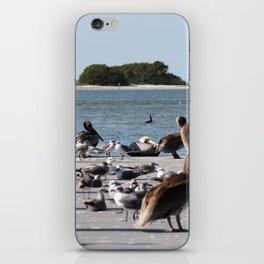 Pier Pressure  iPhone Skin
