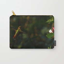 Hummingbird Near Totality 2017 Oregon Carry-All Pouch