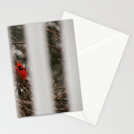 Red Cardinal, peeking in on your life Stationery Cards
