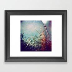 Holga Flowers III Framed Art Print