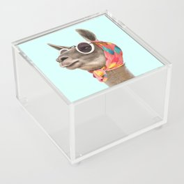 FASHION LAMA Acrylic Box