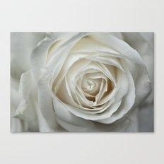 White Rose 9419 Canvas Print