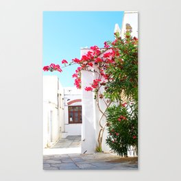 Pyrgos flowers Canvas Print