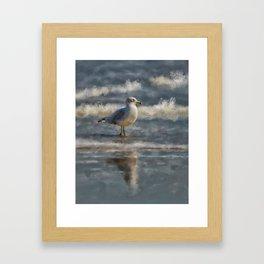 Seagull By The Seashore Framed Art Print