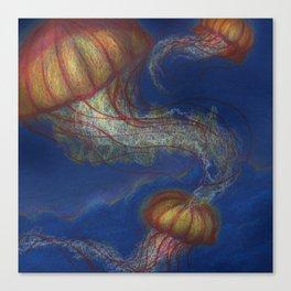 Illume Canvas Print