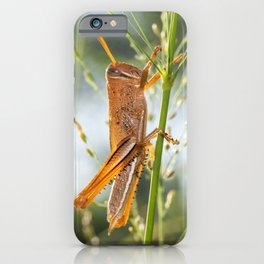 Giant Grasshopper iPhone Case