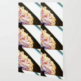 Shrimp Wallpaper