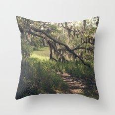 Southern Secrets I Throw Pillow
