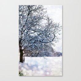 bokeh snow Canvas Print