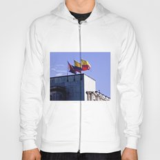 Monument of flags. Hoody