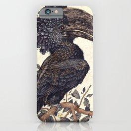 Silvery Cheeked Hornbill iPhone Case