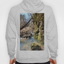Alone in Secret Hollow with the Caves, Cascades, and Critters - Peering into the Cold, Clear Spring Hoody