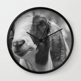 Goat Photography | Farm Animals | Nature Wall Clock