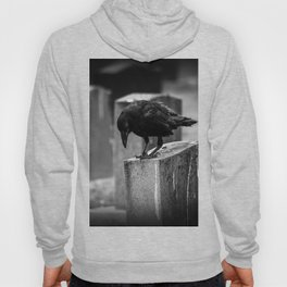 Cemetery Crow Hoody