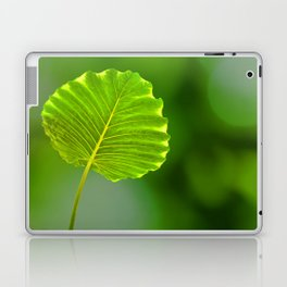 Bokeh Leaf Laptop & iPad Skin