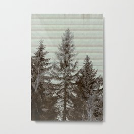 Three pine trees Metal Print