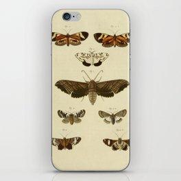 Vintage Moths iPhone Skin