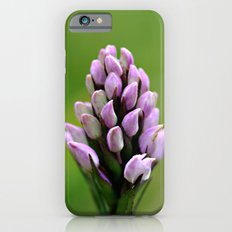 Common Spotted Orchid Slim Case iPhone 6s